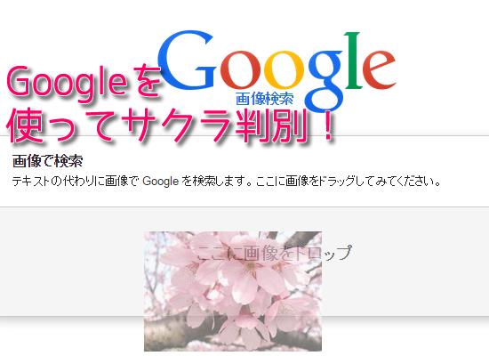 サクラかどうかは写メをGoogle画像検索すれば分かる